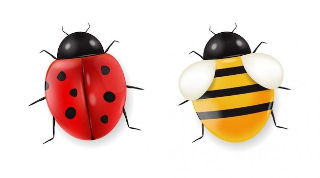 Realistyczna biedronka i pszczoła ustawiający odizolowywającymi