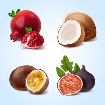 Realistyczna kolekcja owoców