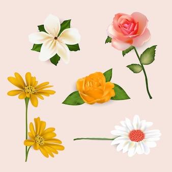 Realistyczna kolekcja wiosennych kwiatów