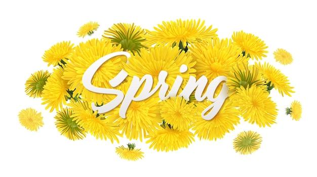 Realistyczna kompozycja mniszka lekarskiego z edytowalnym ozdobnym tekstem i stosem żółtych wiosennych kwiatów