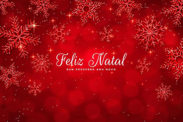 Realistyczna koncepcja feliz natal