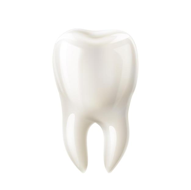 Realistyczna makieta białego zęba. czysty ząb do produktów dentystycznych, usług stomatologicznych, zdrowej próchnicy i szkliwa oraz pielęgnacji jamy ustnej.
