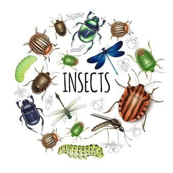 Realistyczna okrągła koncepcja owadów z gąsienicami ważki komary skarabeusz colorado ziemniaki i chrząszcze obornika na białym tle