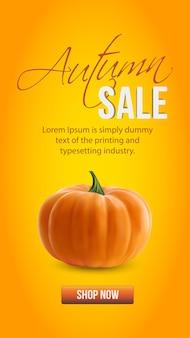 Realistyczna organiczna dynia pomarańczowa na pomarańczowym tle jesienna wyprzedaż historie z instagran