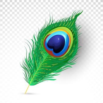 Realistyczna piękna ilustracja pawich piór