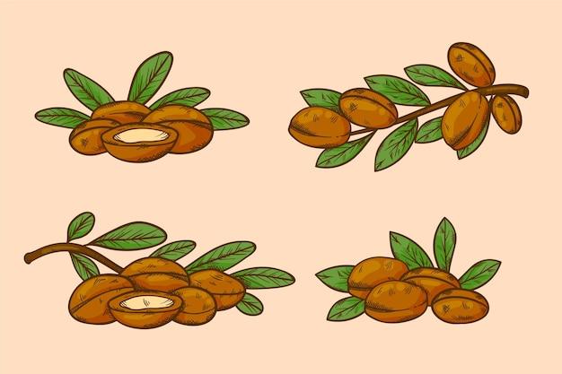 Realistyczna ręcznie rysowane kolekcja elementów oleju arganowego