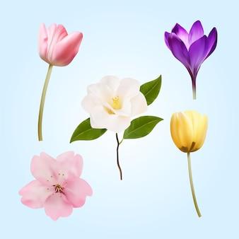 Realistyczna szczegółowa kolekcja wiosennych kwiatów