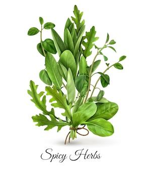 Realistyczna wiązka świeżych zielonych warzyw liściastych pikantnych ziół z tymiankiem szpinakowym z rukoli