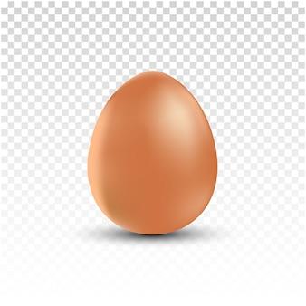 Realistyczne brązowe kurze jaja na przezroczystym tle