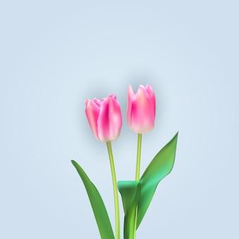 Realistyczne ilustracja kolorowe tło tulipany