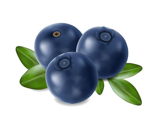 Realistyczne jagody, letnie owoce na białym tle