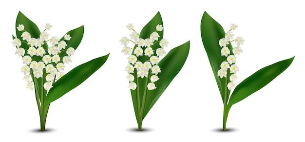 Realistyczne kwiaty konwalii.