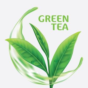 Realistyczne liście zielonej herbaty