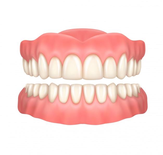Realistyczne protezy lub sztuczne zęby