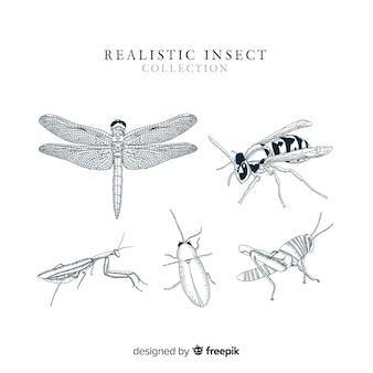 Realistyczne ręcznie rysowane kolekcja owadów