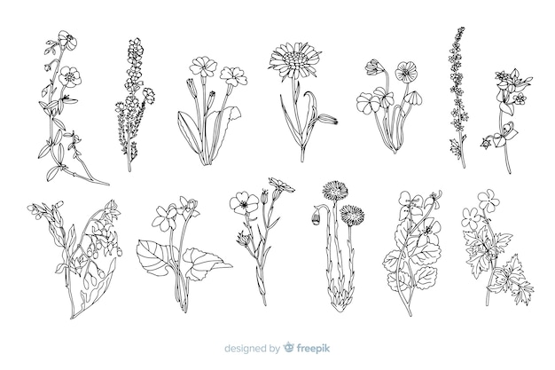 Realistyczne ręcznie rysowane kwiaty