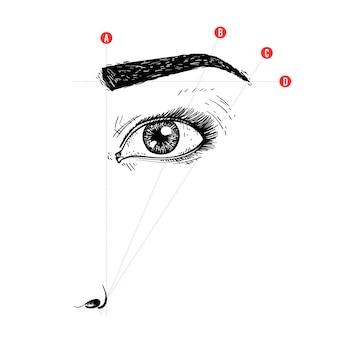 Realistyczne, ręcznie rysowane mapowanie brwi