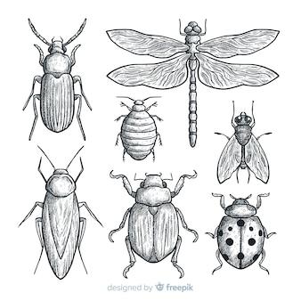 Realistyczne ręcznie rysowane szkic pakiet owadów