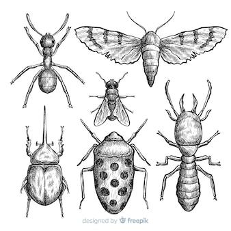 Realistyczne ręcznie rysowane zestaw szkic owadów