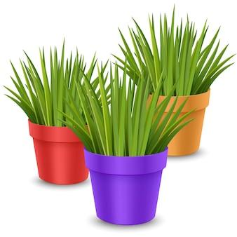 Realistyczne rośliny doniczkowe w kolorowych doniczkach