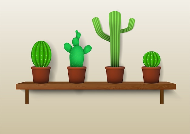 Realistyczne różne ozdobne kaktusy na półkach.