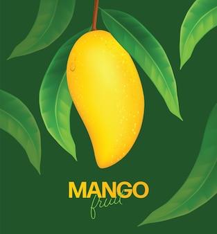 Realistyczne, szczegółowe całość i kawałki mango