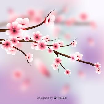 Realistyczne tło kwiat wiśni