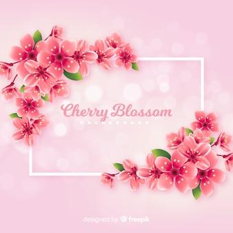 Realistyczne tło wiśniowy kwiat