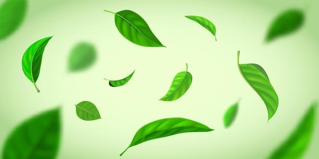 Realistyczne tło z liści zielonej herbaty latające na wietrze. świeży efekt natury z liśćmi ziół w powietrzu. transparent wektor plantacji herbaty ekologicznej. liście w ruchu opadające, wiejący wiatr