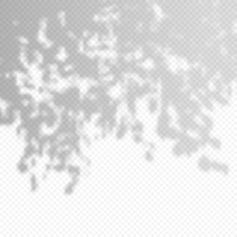 Realistyczne wektor przezroczysta nakładka blured cień liści gałęzi. element projektu do prezentacji i makiet. efekt nakładki cienia drzewa.