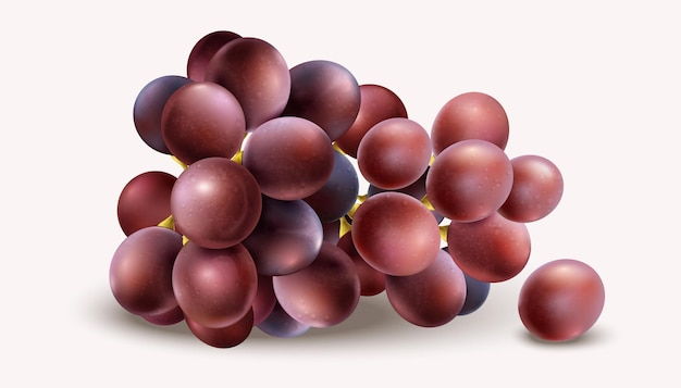 Realistyczne winogrona na białym tle
