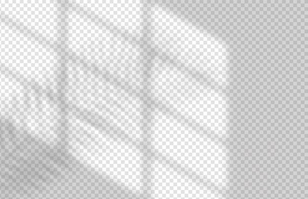 Realistyczny cień okna i liścia szablon tropikalny liść i światło z makiety nakładki na okno...