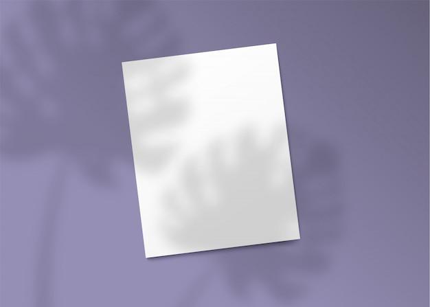 Realistyczny cień rośliny monstera padający na pusty kawałek papieru