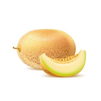 Realistyczny okrągły melon z kawałkiem pysznych słodkich owoców