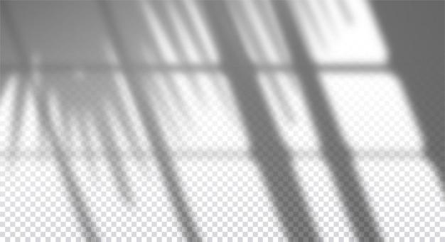 Realistyczny przezroczysty cień okna z gałązką palmową na ścianie, efekt nakładki na zdjęcie