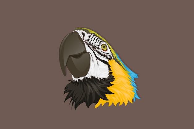 Realistyczny rysunek odręczny twarz papugi niebieski i żółty