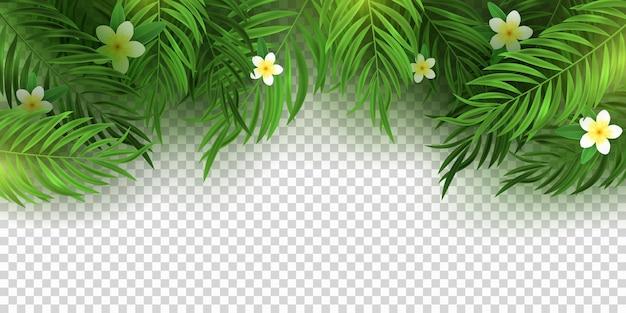 Realistyczny tropikalny bukiet z liści palmowych i kwiatów plumeria