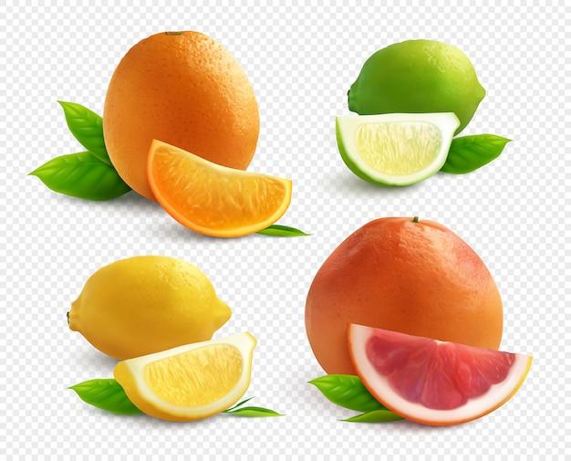 Realistyczny zestaw owoców cytrusowych z limonkową cytryną i grejpfrutem na przezroczystym tle