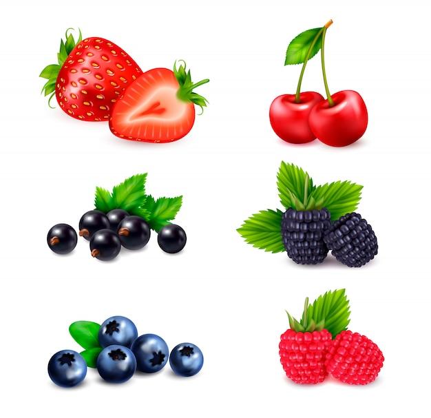Realistyczny zestaw owoców jagodowych z odizolowanymi kolorowymi obrazami jagód posortowanymi według różnych gatunków z cieniami