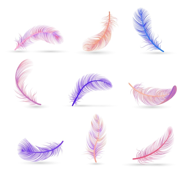 Realistyczny zestaw piór z miękkimi fioletowymi i różowymi izolowanymi piórami