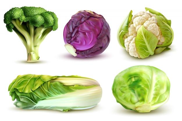 Realistyczny zestaw ze świeżych brokułów białej kapusty chińskiej pozostawia kalafior na białym tle
