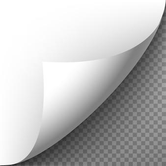 Realistyczny zwinięty róg papieru