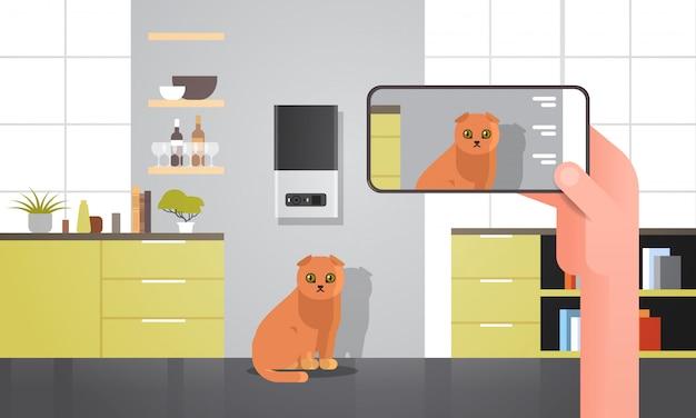 Ręczne fotografowanie kota na aparacie w smartfonie automatyczne cyfrowe przechowywanie suchego karmy dla zwierząt domowych dozownik karmy dla zwierząt karma online aplikacja mobilna nowoczesny salon wnętrze poziomy