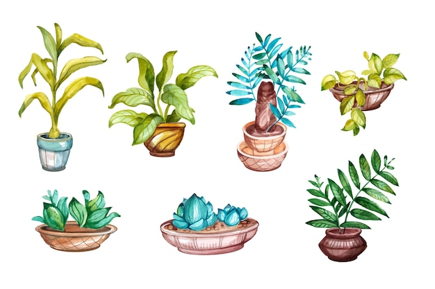 Ręcznie malowana kolekcja roślin doniczkowych akwarela