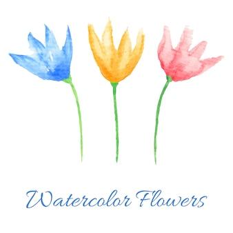Ręcznie malowane kwiaty akwarela. elementy graficzne dla baby shower i zaproszenia ślubne, kartki urodzinowe, identyfikacja wizualna i wizytówki, strony internetowe i scrapbooking. ilustracja wektorowa