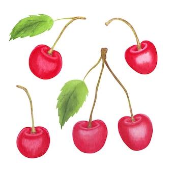 Ręcznie malowane wiśnie akwarela ilustracja