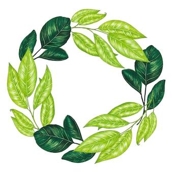 Ręcznie malowany markerem wieniec kwiatowy z gałązką, gałęzią i zielonymi liśćmi abstrakcyjnymi