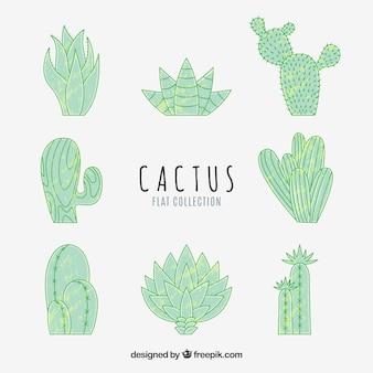 Ręcznie narysowany pakiet zabawy kaktus