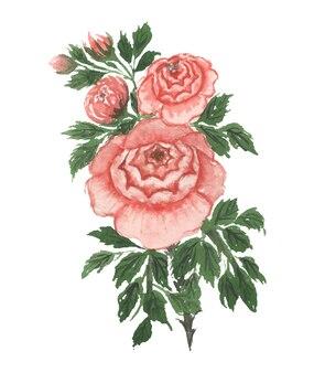 Ręcznie robione akwarele sztuki kwiatowej