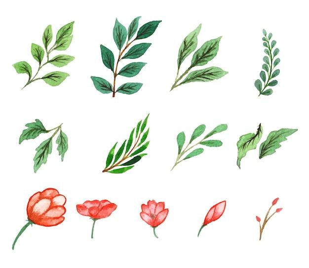 Ręcznie robiony zestaw kwiatów i liści akwarela